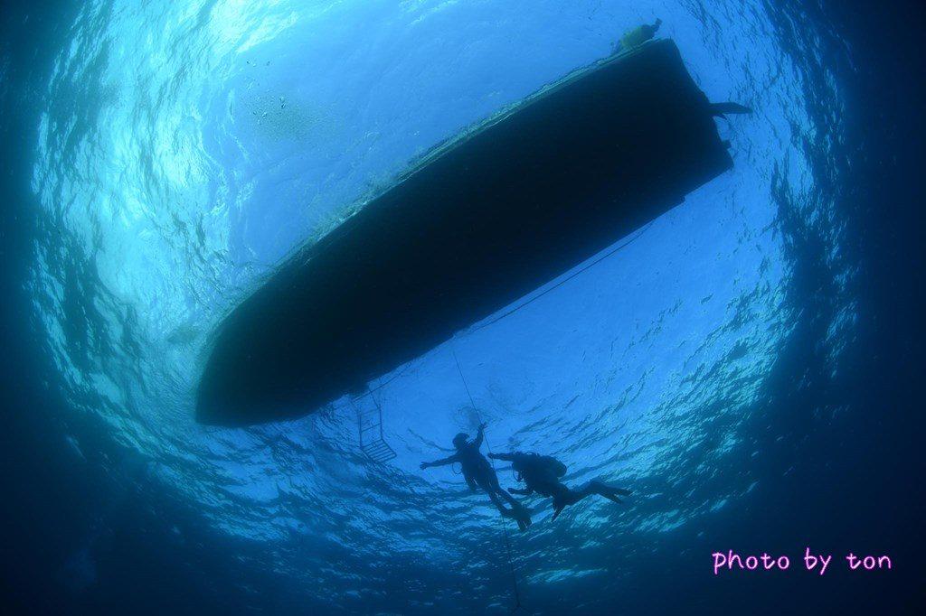 ダイビング スキルアップ 潜降