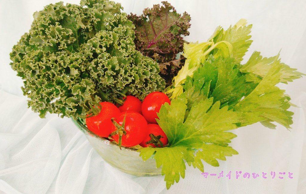 小笠原 島野菜