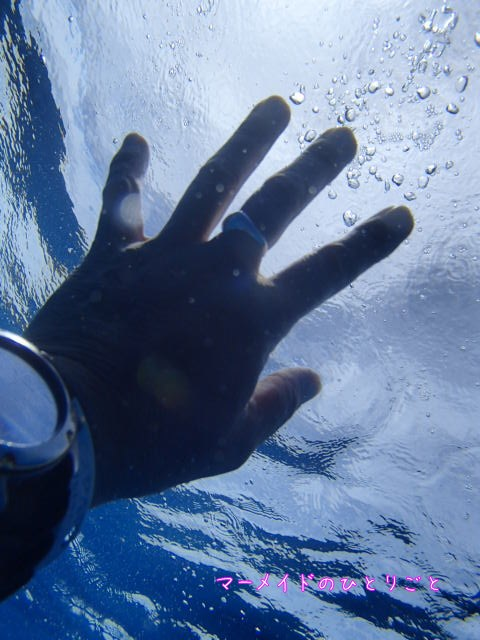 ダイビング 中性浮力 ドリフトダイビング