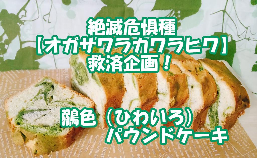 オガサワラカワラヒワ ひわ色ケーキ
