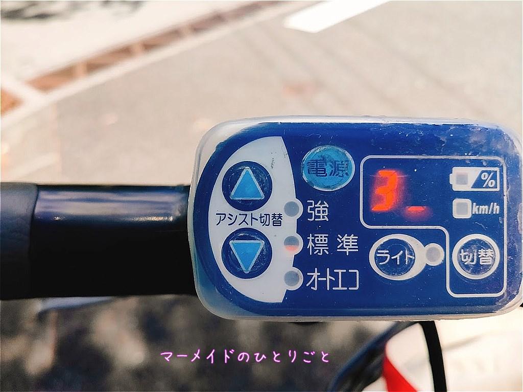 サイクリング 小笠原