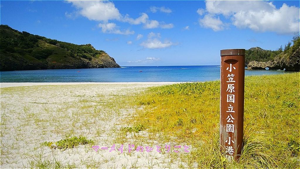 小港海岸 小笠原 おすすめビーチ