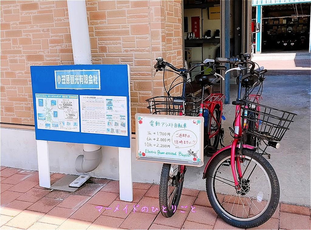 電動アシスト付自転車