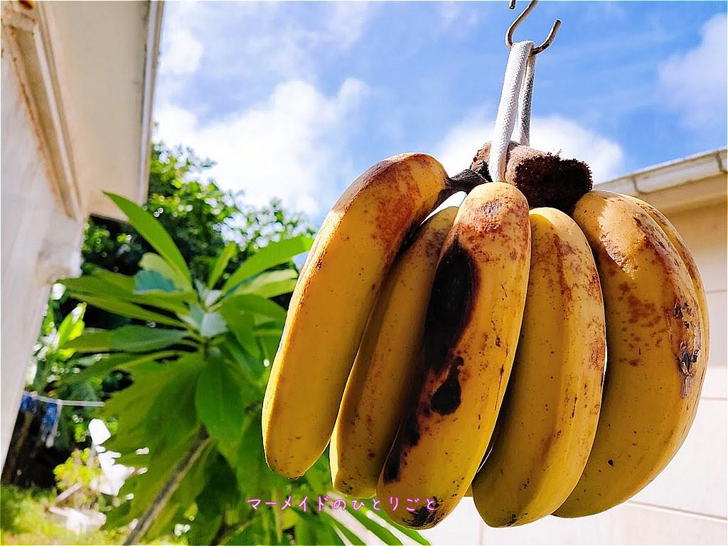 島バナナ 食べ頃